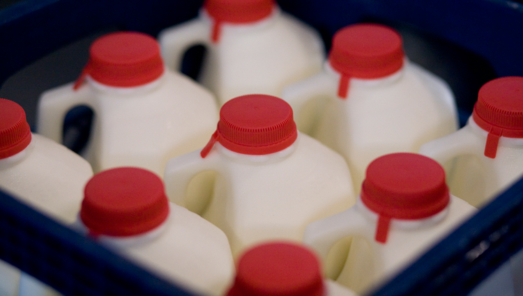 gallons of milk in a crate with red lids