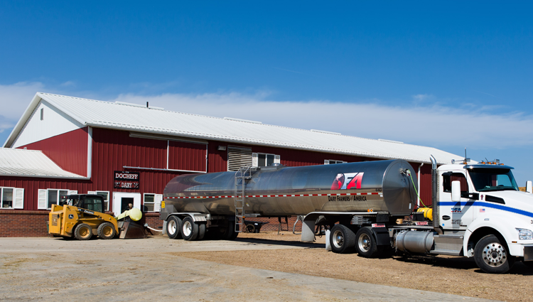 milk tanker truck at a dairy farm