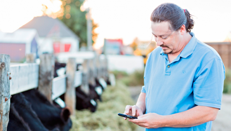 Digital Dairy: Engaging Consumers Online and How Farmers Can Share Their Story